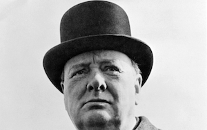 Churchill volwassen man